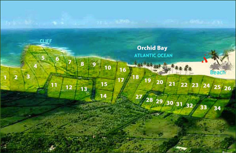 OrchidBaysiteSiteplan