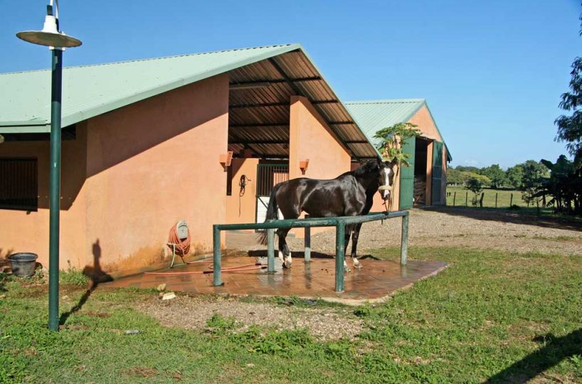 Sea Horse Ranch stables