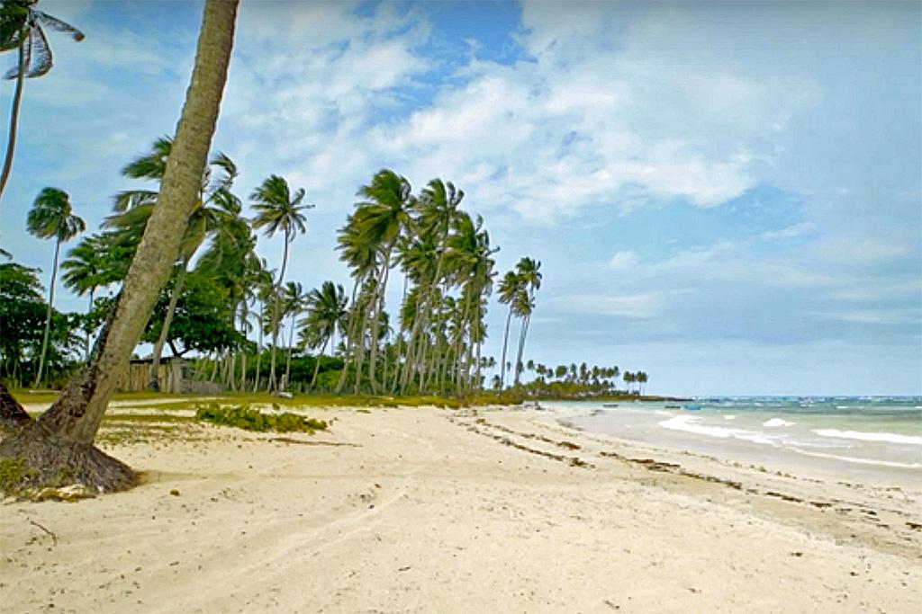 3bb-beach-palms-development-land-for-sale-in-cabrera