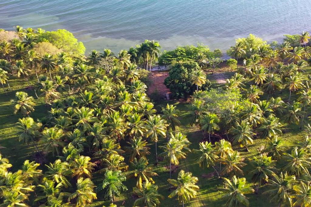 aerial-view-rio-los-cocos-beach