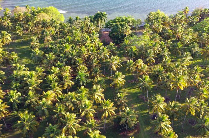 aerial-view-rio-los-cocos-development-land