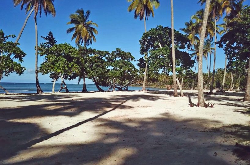 view-of-the-beach-las-galeras