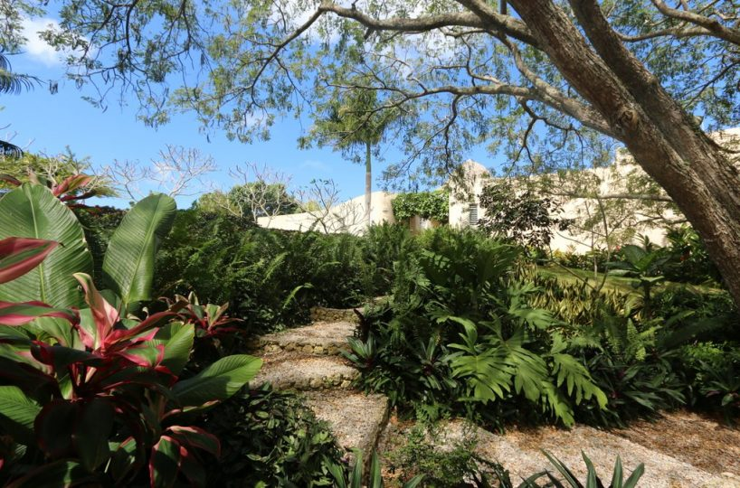 casa-villa-serena-for-sale-in-cabrera-DR-tropical-garden-view