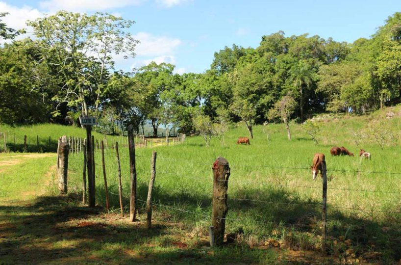 Rancho-Santuario-Horse-Fences
