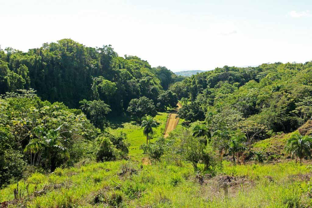 Rancho-Santuario-Road